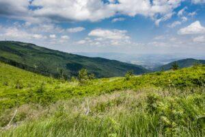 Na zielonym szlaku Skrzyczne - Malinowska Skała. Widok w kierunku Doliny Zimnika. Z lewej strony widoczne Skrzyczne (1257 m n.p.m.).