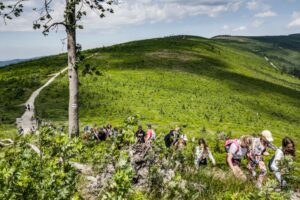 Na zielonym szlaku Skrzyczne - Malinowska Skała. Podejście na Malinowską Skałę, a w tle przebyta droga od Skrzycznego.