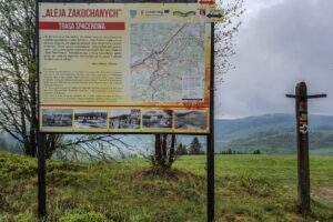Na grzbiecie Skalanka - Beskidek - Rachowiec jest urokliwa Aleja Zakochanych.