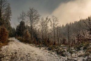 Do wysokości około 1000 m n.p.m. królowała biel szadzi oraz mgły. :)