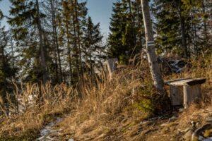 Ławeczka na szlaku między złotymi trawami. Pięknie! :)