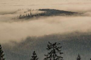 Zbliżenie na lasy i mgły po orawskiej stronie.