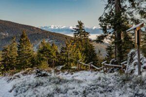 Zbliżenie na Tatry z granicy Rezerwatu Przyrody ''Lipowska''.