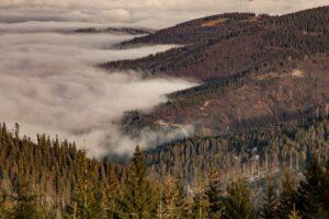 Malownicze mgły nad Sopotnią...