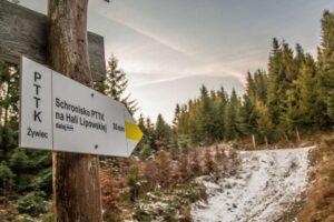 Oznakowanie żółtego szlaku na Halę Lipowską.