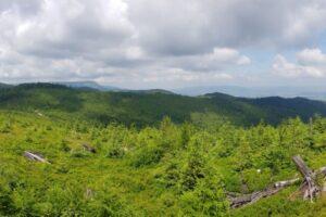 Na kopule szczytowej Glinnego (1034 m n.p.m.)... Panorama w kierunku północnym.
