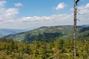 Na kopule szczytowej Suchej Góry. Widok na Prusów.