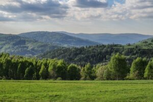 Okolice Wilczego Gronia... Widok w kierunku Zabaw i Baraniej Góry w tle.