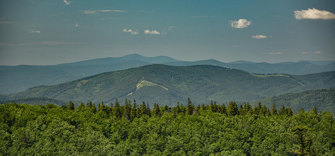 Licencjonowany przewodnik w Beskidy Radosław Szczepanek na tle górskiego krajobrazu Beskidu Żywieckiego. Po środku kadru jest Babia Góra. ;)