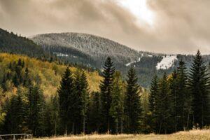 Widok na zaśnieżoną Halę Miziową pod Pilskiem z jesiennego jeszcze terenu OW Pilsko-Jontek.