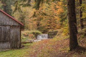 Chatka drwali oraz potok Szczyrbok (in. Kamienny) pięknie się prezentowały w otoczeniu złotych liści...