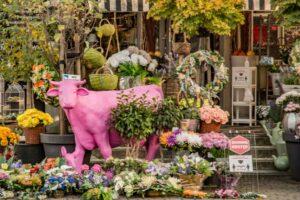 Różowa krowa przy Salonie Kwiatowym ''Aplauz''.