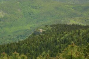 W Babiogórskim Parku Narodowym. Widok na Sokolicę ze szlaku na Diablak.
