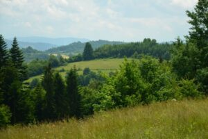 Pola, łąki i lasy nad Ciścem i Kamesznicą.