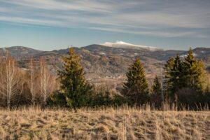 Widok znad Średniówki w kierunku Babiej Góry.