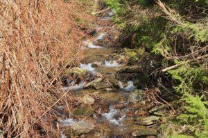 Potok przy ul. Stromej.