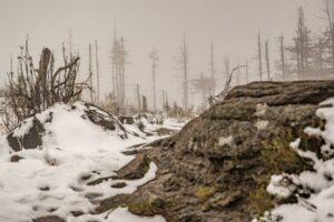 Na szczycie Malinowskiej Skały było jeszcze mgliście.
