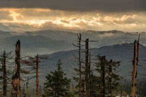 Kilka metrów poniżej szczytu zaczęły odsłaniać się widoki na Wisłę.