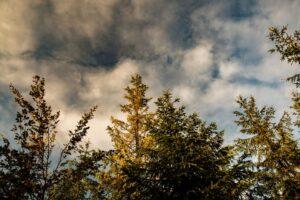 Chmury bardzo śmiało odsłaniają błękit.