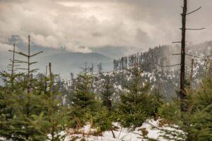Przez lekką odwilż góry zaczęły parować.