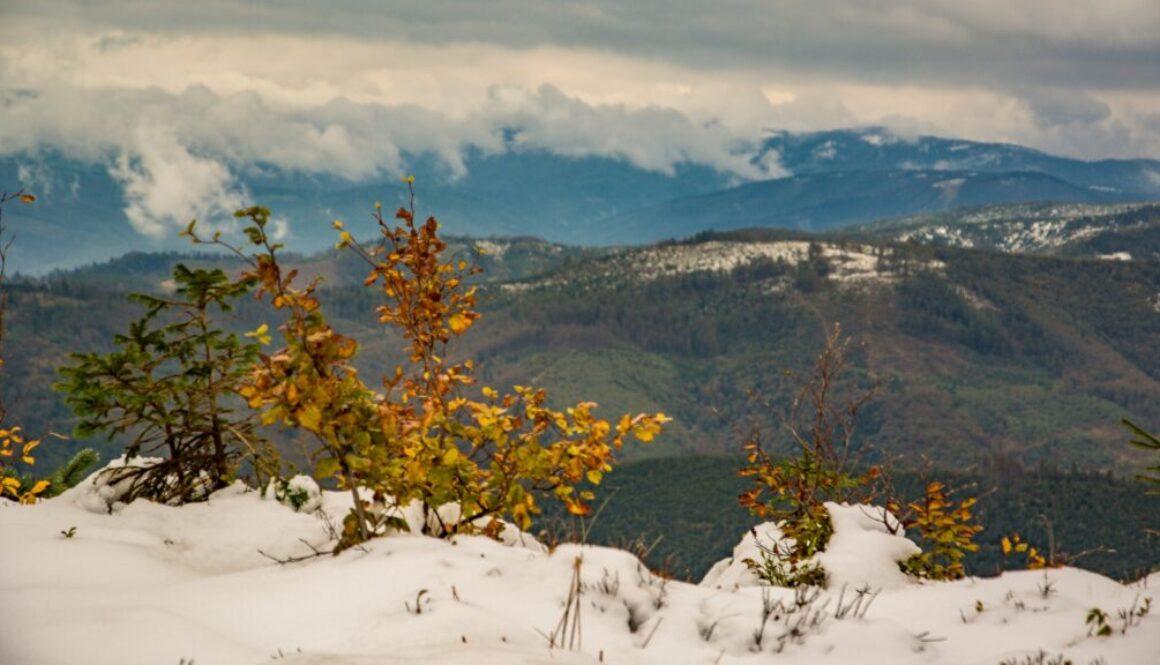 Jesienno-zimowe klimaty z Beskidem Żywieckim w tle.
