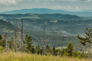 Widok z Praszywki Wielkiej na stoki górskie nad Zwardoniem.