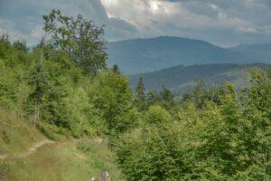 Widok ze stoków Praszywki Wielkiej w kierunku Suchej Góry.