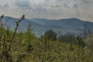 Widok znad Sumowej Grapy w kierunku Beskidu Żywieckiego nad Milówką. (kwiecień 2007)