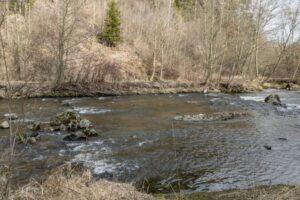 Rzeka Bystra u podnóży Sumowej Grapy. (marzec 2020)