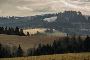 Pola i lasy po słowackiej stronie granicy.