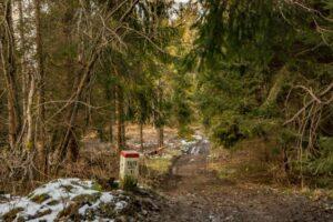 Graniczna ścieżka z Kikuli przez Trojaki na Sołowy Wierch.