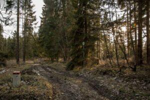 Ścieżka wzdłuż granicy Polski i Słowacji.