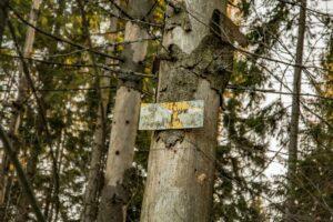 Tabliczka informująca o szczycie Sołowego Wierchu. Farba z tabliczki zeszła niczym kora ze świerków.
