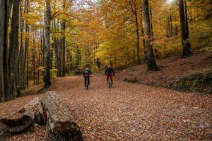 Rowerzyści na trasach Enduro Trails Bielsko-Biała.