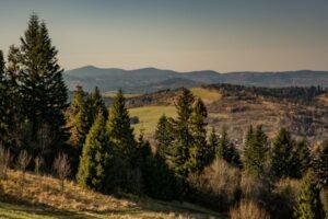 Zbliżenie z Rachowca na Beskid Śląsko-Morawski.