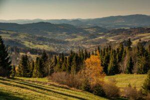 Zbliżenie z Rachowca na Skalité na Słowacji.