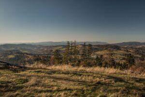 Widok ze szczytu Rachowca na zachód.